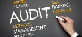 Statutory Accounts and Audit